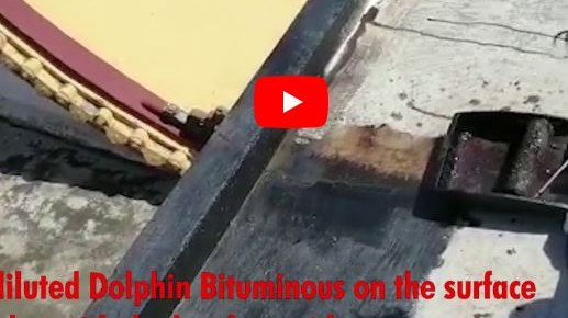 Dolphin bitnumious- Product video